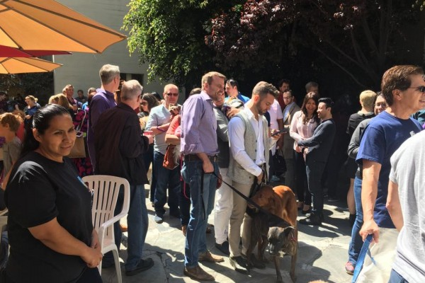Blessing of the Animals 2017 - In the Courtyard at the Hollywood Campus