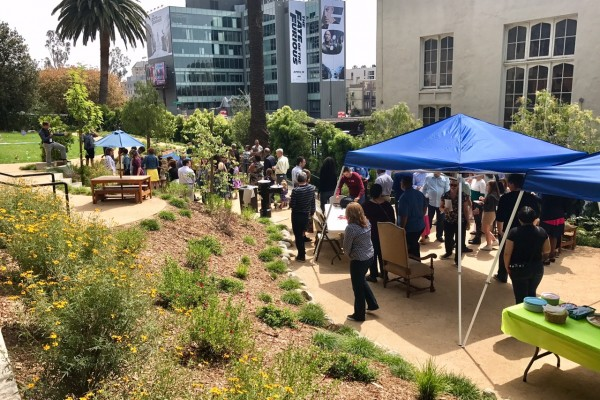 Palm Sunday April 9th, 2017 - Children's Easter egg hunt in our new park space