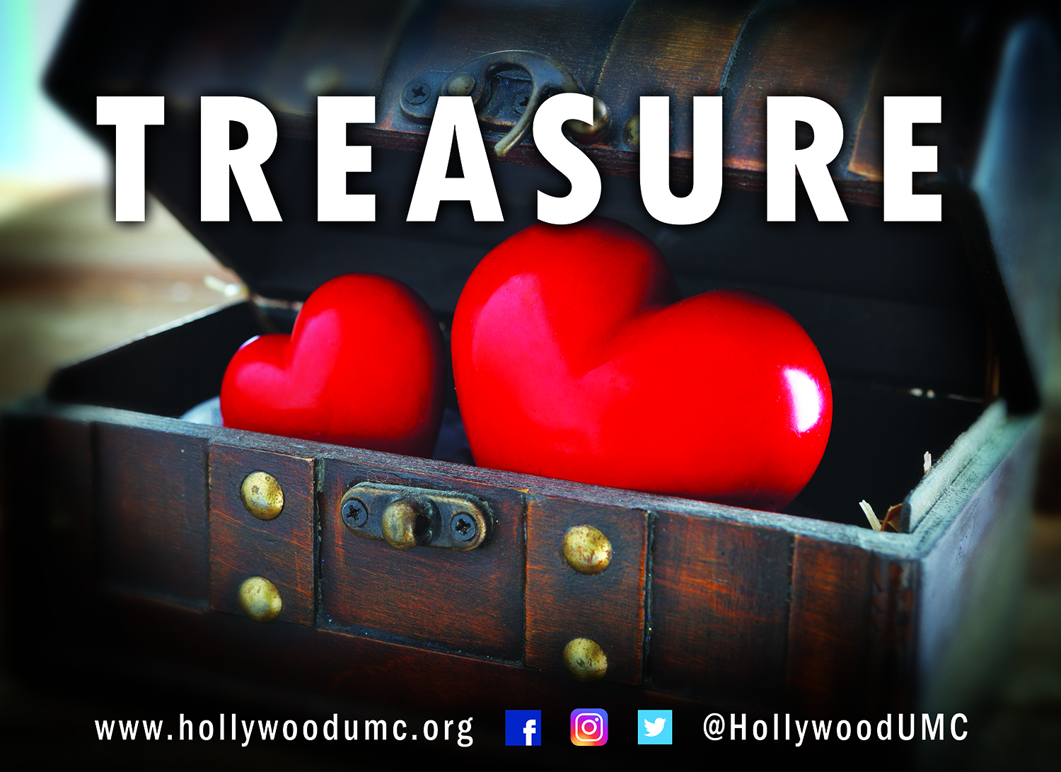 Treasure Hwood San Banner (132x96)