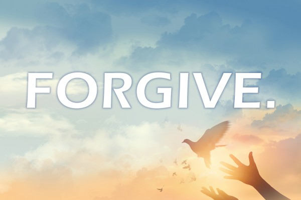 Forgive Hwood San Banner (132x96)